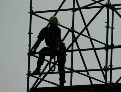 My First Job: Constructing a Work Ethic